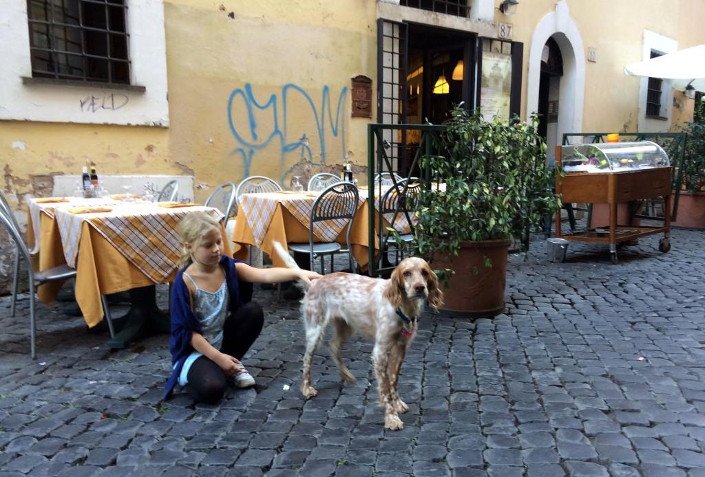 rom-hund